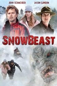 Poster Snow Beast 2011