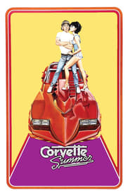 Corvette Summer 1978