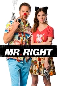 Poster Mr. Right 2016