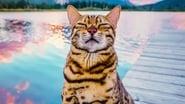 Captura de #cats_the_mewvie