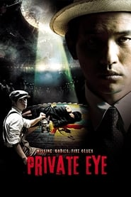 Private Eye (2009) 1080P 720P 420P Full Movie Download