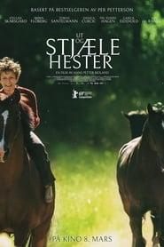 Ut og stjaele hester