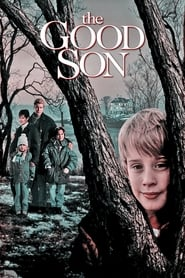 Poster The Good Son 1993