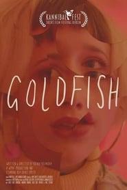 Goldfish 2020