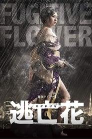 مشاهدة مسلسل Fugitive Flower مترجم أون لاين بجودة عالية