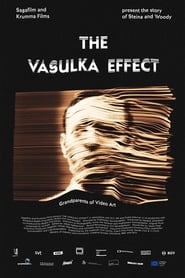 The Vasulka Effect (2020)