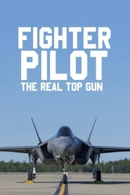 Image Fighter Pilot: The Real Top Gun
