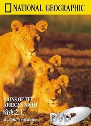Lions of the African Night