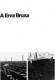 A Erva Bruxa 1970