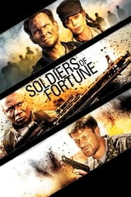 Soldiers of Fortune [2012]