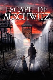 Image Escape From Auschwitz