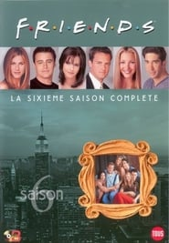 Friends: Saison 6