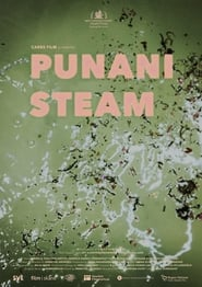 Punani Steam 2021