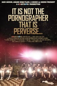 It Is Not The Pornographer That Is Perverse…