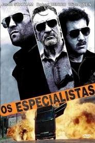 Os Especialistas Dublado