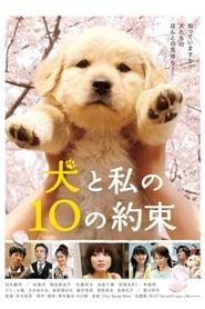 10 Promises to my Dog 2008