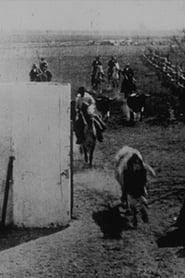 Encierro de toros 1898