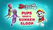 Sea Patrol: Pups Save a Sunken Sloop