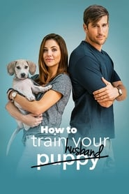 How to Train Your Husband (2018), film online subtitrat în Română