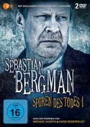 Sebastian Bergman Season