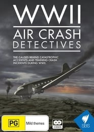 WWII Air Crash Detectives 2014