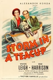 Storm in a Teacup (1937)