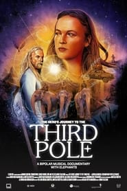 Watch The Hero's Journey to the Third Pole (2020)