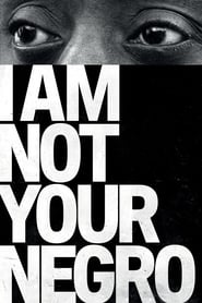 I Am Not Your Negro Dreamfilm