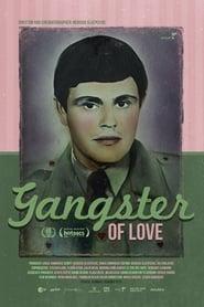 Gangster te voli 2013
