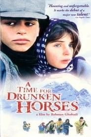 Un tiempo para los caballos borrachos