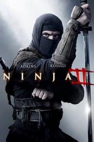 Ninja 2: A Vingança