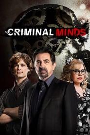 Criminal Minds Season 14