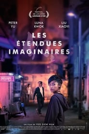 voir film A Land Imagined streaming