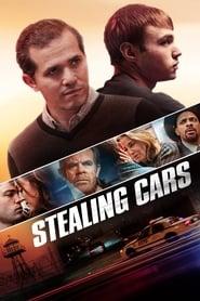 Robando coches (2016)
