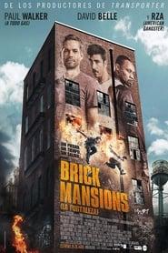Brick Mansions (2014)