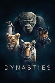 Dynasties streaming sur zone telechargement