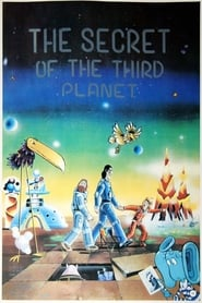 The Secret of the Third Planet