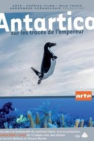 Antartica : sur les traces de l'empereur streaming sur zone telechargement
