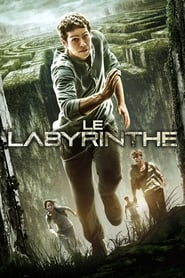 Le Labyrinthe streaming sur filmcomplet