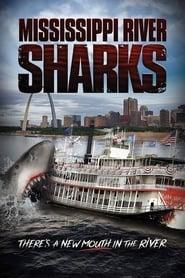 Tubarões no Rio Mississippi