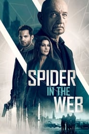 Descargar La trampa de la araña (Spider in the Web) 2019 Latino DUAL HD 720P por MEGA