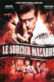 Le Sorcier macabre streaming sur libertyvf