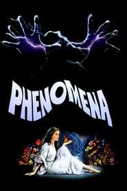 Phenomena streaming sur filmcomplet