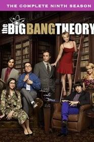 The Big Bang Theory 9ª Temporada