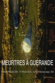 Meurtres à Guérande streaming sur libertyvf