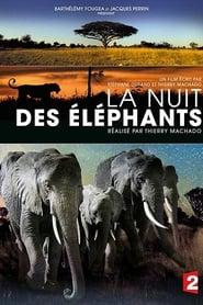 voir film La Nuit des Éléphants streaming