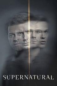 Descargar Supernatural Temporada 15 Español Latino & Sub Español por MEGA