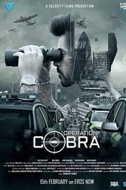 Operation Cobra 2019 Tv Series [Season 1] Hindi x264 WEB DL 480p [410MB] | 720p [1.1GB] mkv