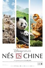 Nés en Chine streaming