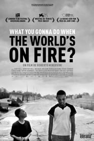 voir film What You Gonna Do When the World's on Fire ? streaming